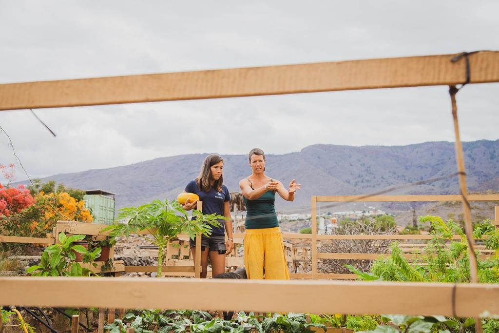 Visite d'un potager sur l'île de Ténérife, aux Canaries.